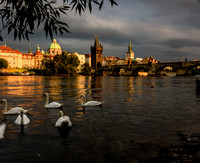 Vltava River looking towards Charles Bridge and Powder Tower